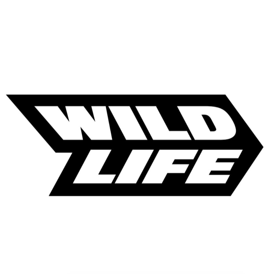 Wildlife Studios recebe aporte de US$ 120 milhões e passa a valer US$ 3 bi