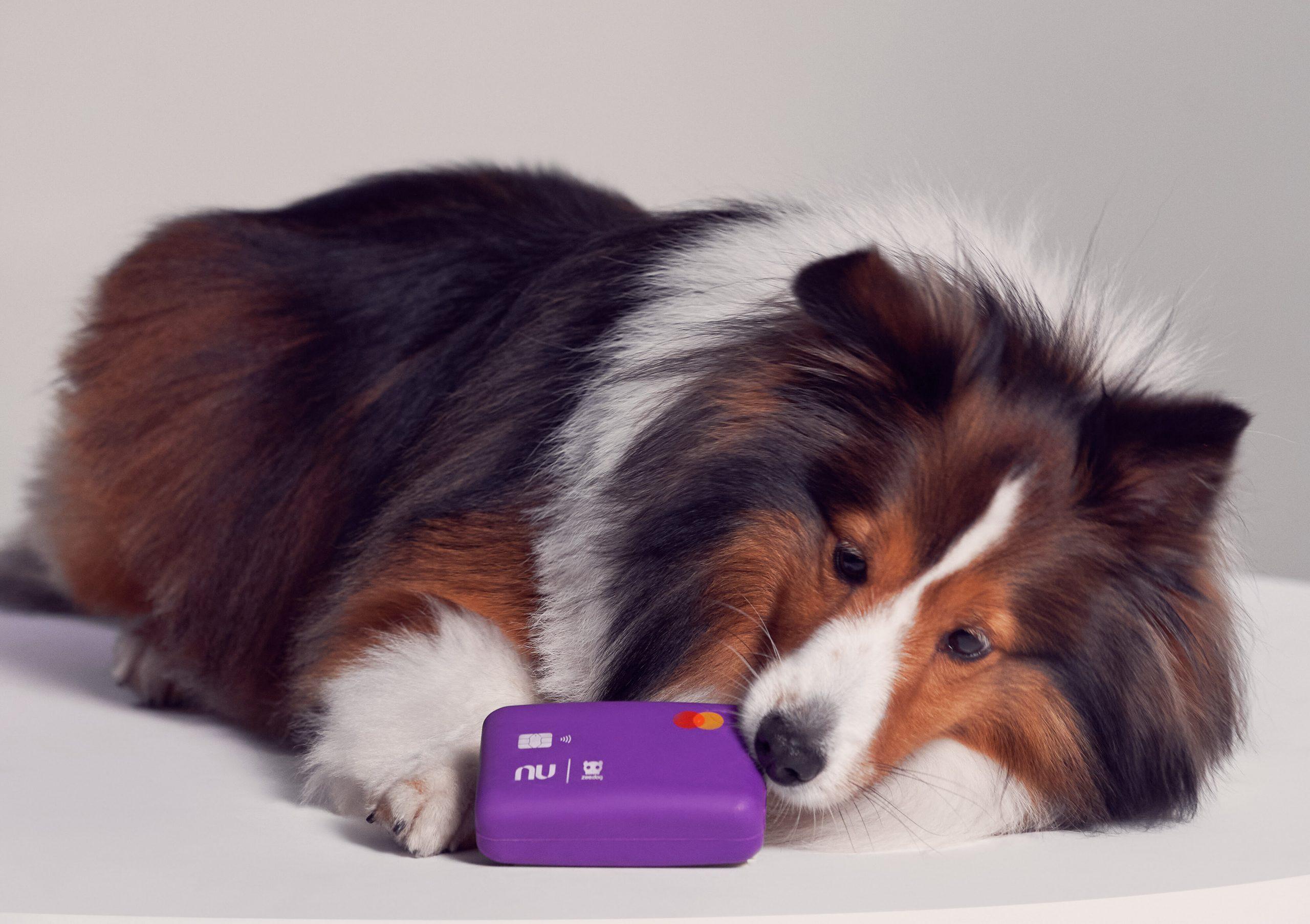 Nubank e Zee.Dog lançam cartão bom pra cachorro; os donos agradecem